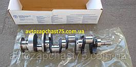 Коленвал Паз 3205 (производитель Заволжский моторный завод, Россия)