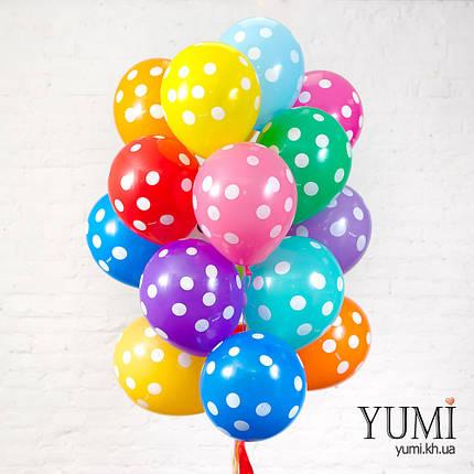 Яркая связка из 20 разноцветных шаров в горох, фото 2
