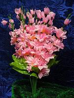 Ветка гладиолуса , декоративная