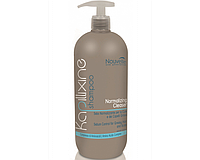 Nouvelle Normalizing Cleanser Shampoo Шампунь для жирных волос с экстрактом крапивы 1000 мл.