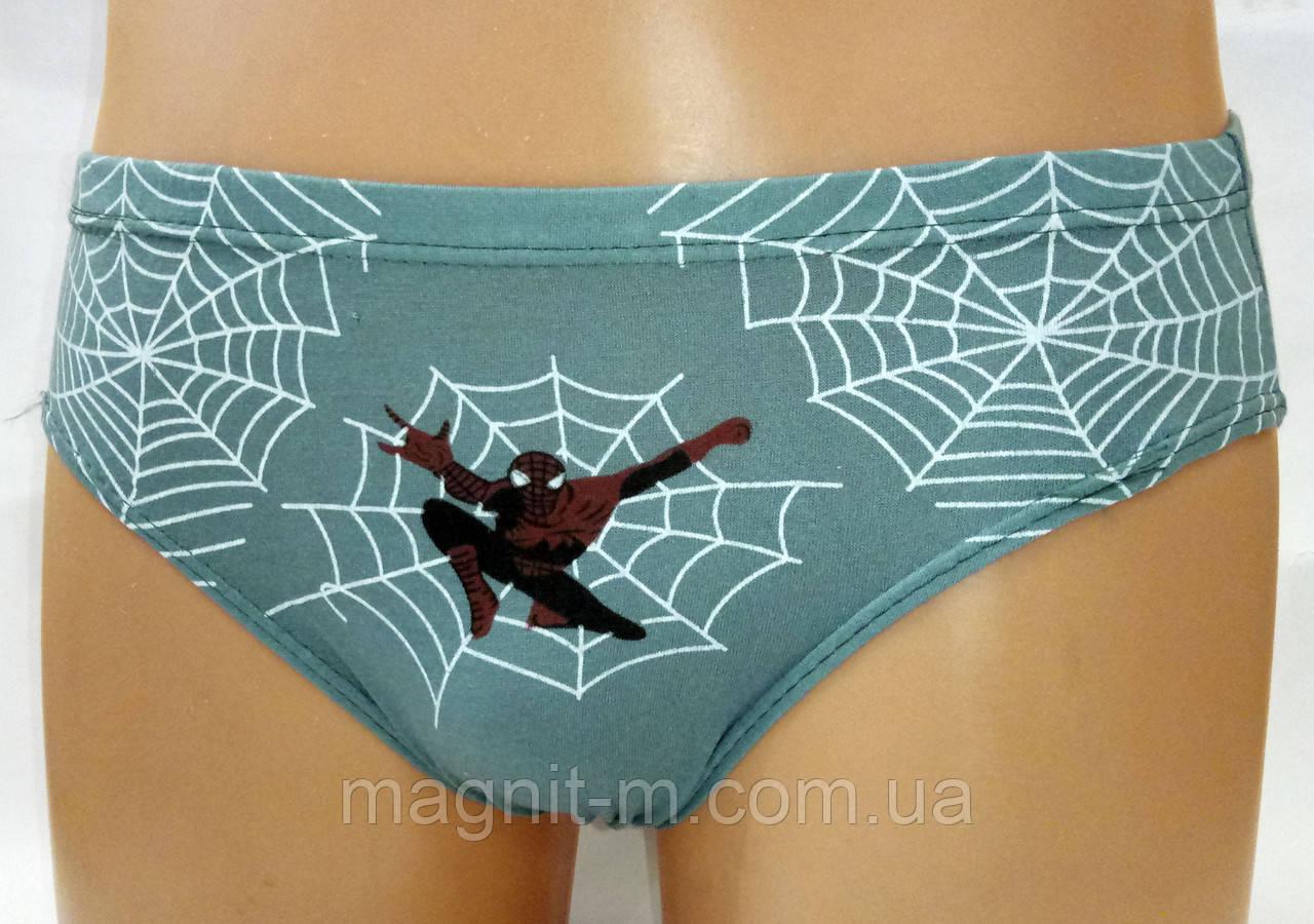 Трусики детские на мальчика. Spider-Man. Размер 8-10 лет  оптовые ... 29e0f072f7c