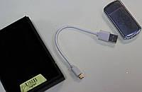 USB зажигалка серебристая, тигр