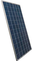Солнечная панель  SUNTECH  STP325-24\Wfw 5BB