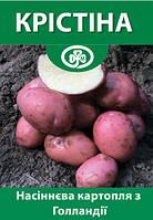 Картопля Крістіна (Голандія) рання
