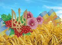 """Схема для вышивки бисером А3 """"Символы Украины"""""""