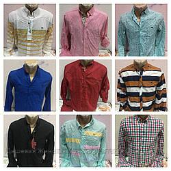 Рубашка мужская все бренды лот за1000грн