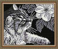 "Алмазна мозаїка ""Кіт з магнолією"""