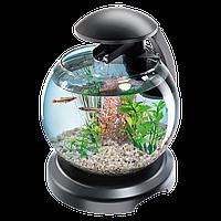 Аквариум Tetra (Тетра) Cascade Globe черный для петушка и золотой рыбки 6,8 литров