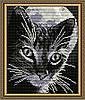 "Алмазна мозаїка ""Кіт під місяцем"""