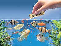 Tetra - корм для аквариумных рыб