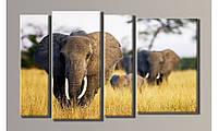 """Модульная картина на холсте """"Слоны 2"""""""