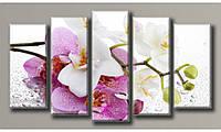 """Модульная картина на холсте """"Орхидея на стекле 3"""" для интерьера"""