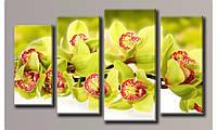 """Модульная картина на холсте """"Зелёная орхидея 2"""""""