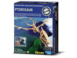 Дет/ла. Скелет Птерозавр. Раскопки. /6/