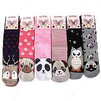 Новогодние махровые носки женские теплые НЖ0056