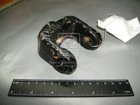 Вилка крепления амортизатора МАЗ (пр-во МАЗ) 4370-2905419