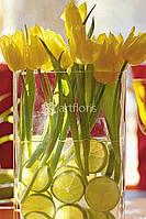 Оформление банкета цветами, композиция на стол из тюльпанов