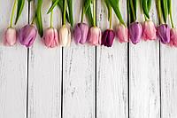 Фотофон виниловый, весна тюльпаны 0020181