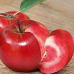 Яблоня Эра (красномясая)