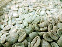 Кофе зеленый в зернах Колумбия Супремо 20 Меделин (ОРИГИНАЛ), арабика Gardman (Гардман)
