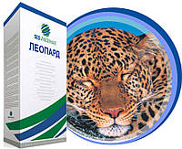 Семена SESVH Леопард