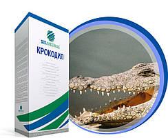 Свекла SESVH Крокодил