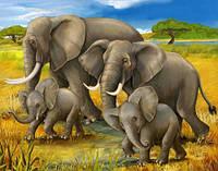 Рисование по номерам Полдень в Африке, Животные, Идейка (KH2464)