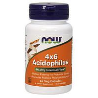 Комплекс ацидофильных бактерий 4x6 Acidophilus 60 cap USA