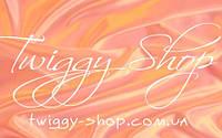 Интернет-магазин Twiggy Shop презентует новый логотип