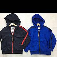 Детские весенние куртки для мальчиков оптом BUDDY BOY