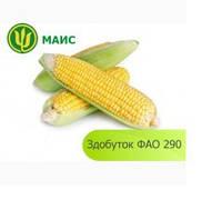 Семена кукурузы Здобуток ФАО 290