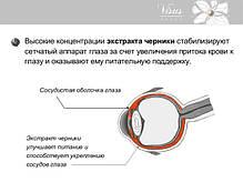 Визус VIP комлекс - способствует восстановлению зрительной функции после оперативного вмешательства.Арт лайф, фото 2
