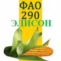СЕМЕНА КУКУРУЗЫ ЭЛИСОН ФАО 290