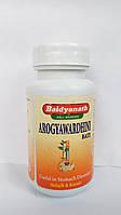 Арогьявардхини, арогья вардхини, гепатопротектор, желчегонное, очищение, Arogyawardhini Bati (80tab), фото 1