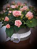 Дрібна трояндочка в капелюшної коробки, фото 2