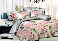 Комплект постельного белья полуторный, ранфорс 100% хлопок. Постільна білизна. (арт.6410)