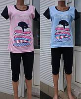Женская трикотажная пижама футболка с бриджами 44-58 р, женские пижамы оптом от производителя