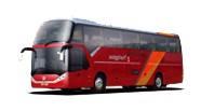 Международные автобусные туристические поездки из Львова Ужгорода Чопа