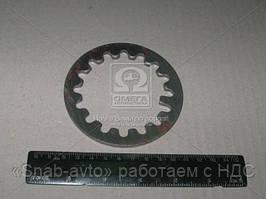 Шайба стопорная гайки подшипника ступицы ГАЗ 3307-3309, ВАЛДАЙ (производство ГАЗ) (арт. 51-2401050)