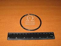 Кольцо раздаточной коробки (Производство МТЗ) 52-1802102