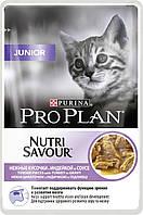 ProPlan Junior, Про План, влажный корм с индейкой  для котят, 85 г