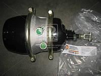 Камера тормозной с пружинным энергоакк (в сборе,тип 30/30) МАЗ,МЗКТ  30.3519300, AGHZX