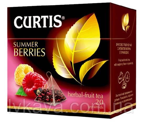 Чай фруктовый Summer Berries  Curtis в пирамидках, 20 пак, фото 2