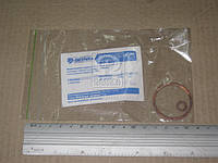 Ремкомплект прокладок УАЗ тормоза главн. (Ремкомплект №010, 2 наименования) (производство АДС, г.Ульяновск)