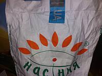Насіння соняшника під гербіцид Гранстар БОНД. Гібрид витримує 30гр/га разово. Врожайний, масличний. Стійкий до посухи та вовчка.