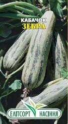 Семена кабачка Зебра 20 шт.