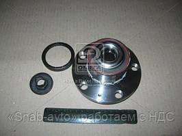 Подшипник ступицы SKODA FABIA (6Y2) передний (Производство FAG) 713 6105 70, AGHZX