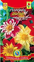 Семена Георгина Денди смесь, 0,2г, Семена Украины