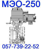 МЭО-250 Механизмы исполнительные электрические