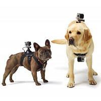 Fetch для экшн камеры GoPro Hero4 / 3+ / 3 / SJ4000 / SJ6000 крепление для собак Чёрный